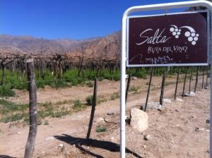 Cafayate Route of Wine