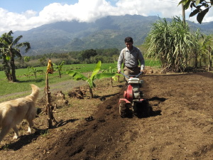 Learning gardening in Honduras