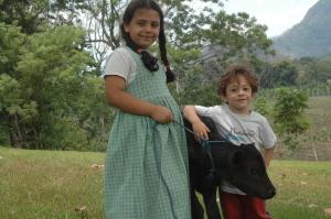 Our calf